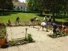 Renaissancegarten-Zitat, Schülerprojekt 2012